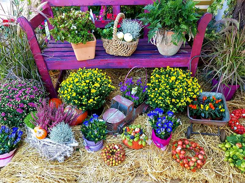 Foto Blumenarrangement